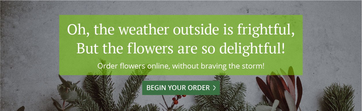 Christmas Center Online Store English Gardens