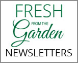 Current and Past Company Newsletters