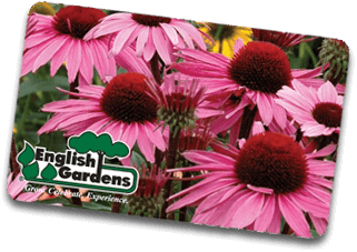 English Gardens Gift Card | Floral Design