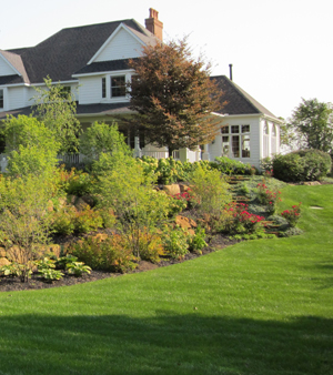 Want A Beautiful Lawn English Gardens Offers Three Steps