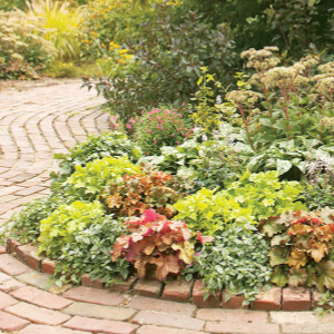 Creating a Landscape Design: Tips for the DIYer