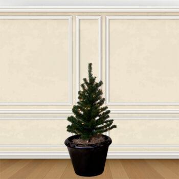 Aspen Fir Walkway Stake Pre-lit Artificial Christmas Trees