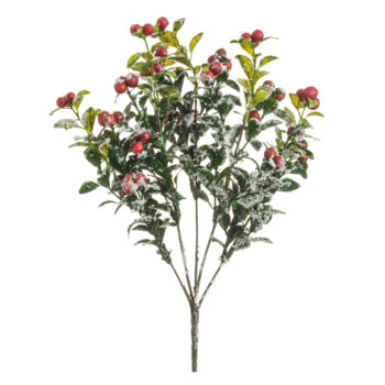 Iced Red Berry Bush