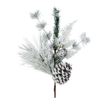 Cedar Pine Cone Branch