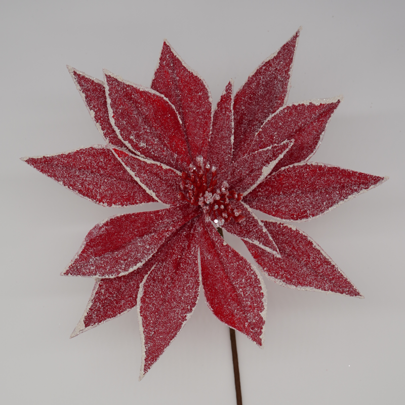 Get Frosted Red Poinsettia In Mi At English Gardens Nurseries Serving Clinton Township Dearborn Heights Eastpointe Royal Oak West Bloomfield And The Plymouth Ann Arbor Michigan Areas