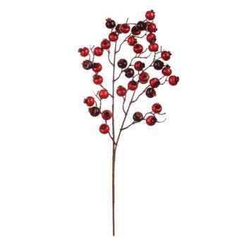 Crabapple Waterberry Branch