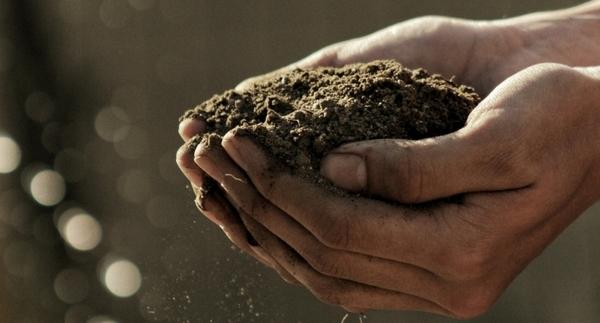 Pick A Soil