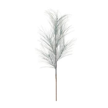 Long Needle Snowy Branch
