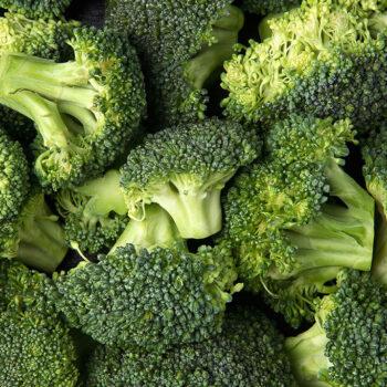 Chef Jeff Broccoli