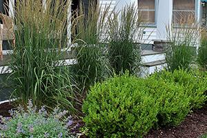 EG-Menu-Landscaping-FullService