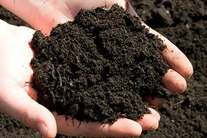 EG-Menu-SoilTesting